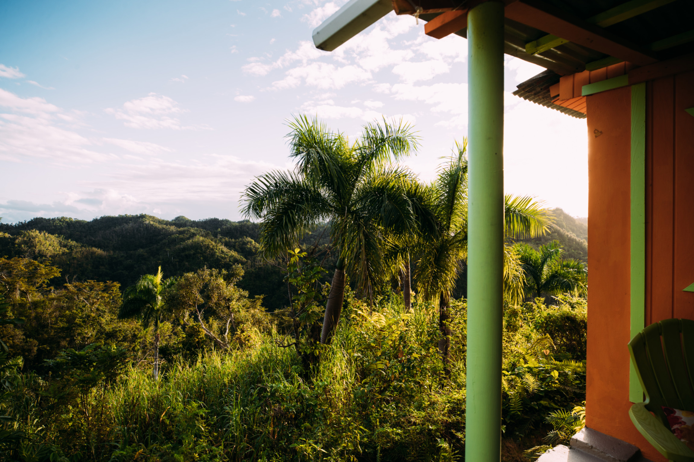 A panoramic view of lush foliage in Utuado.