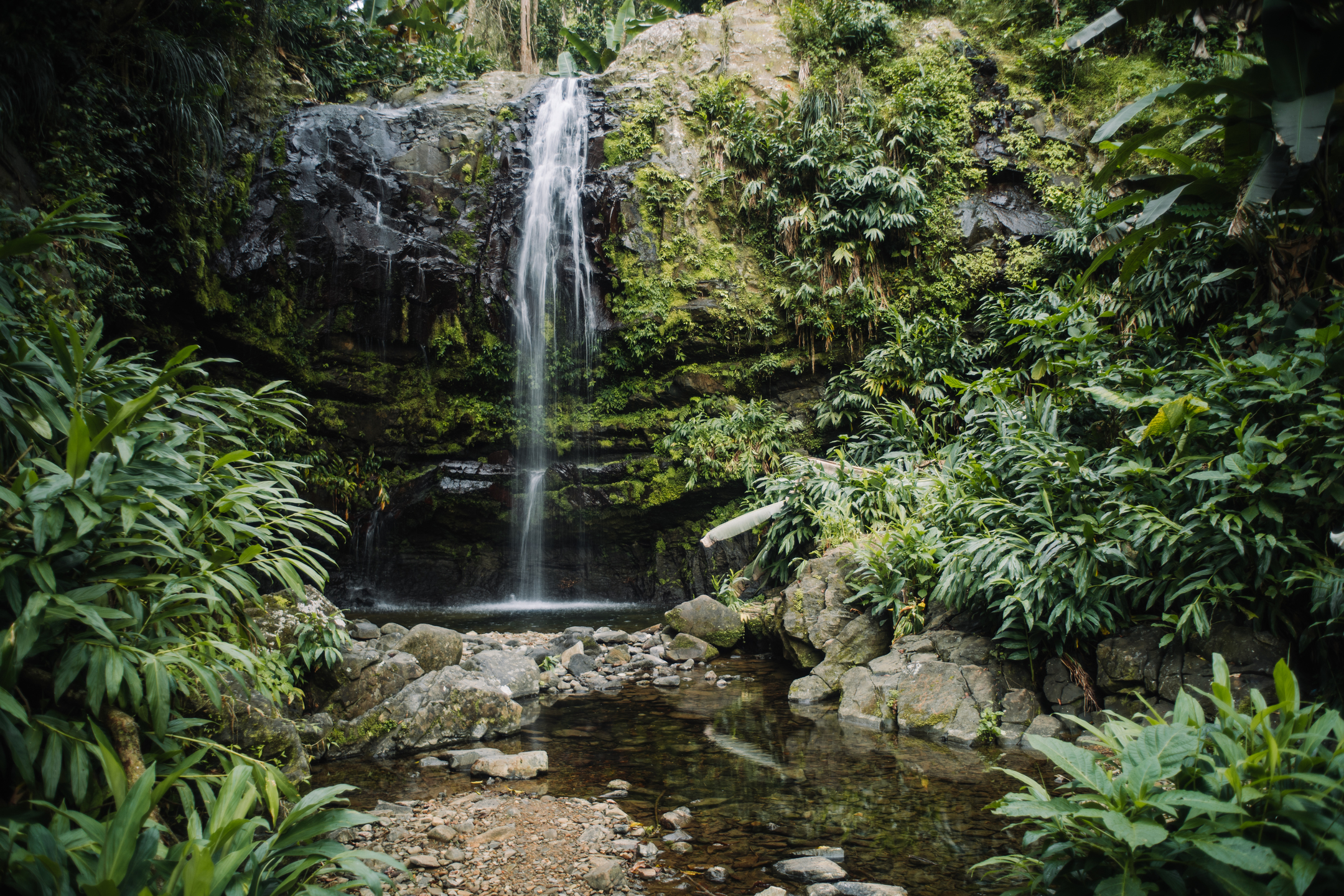The Las Delicias waterfall in Ciales