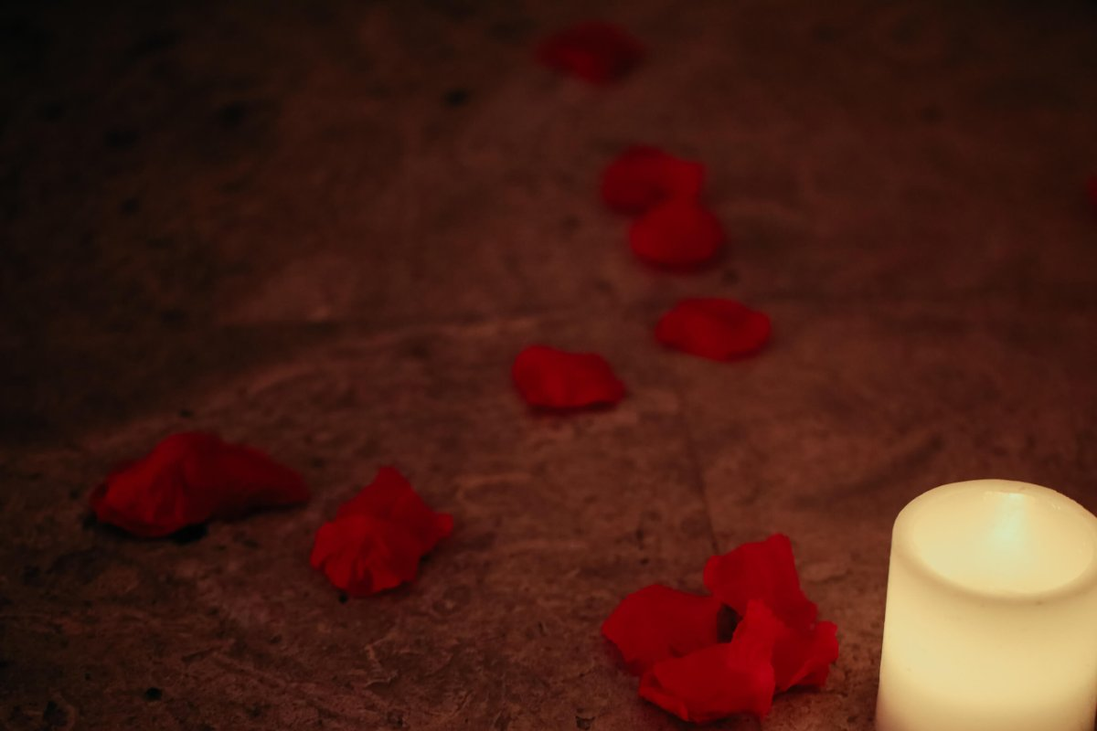 rose petals strewn before a candle