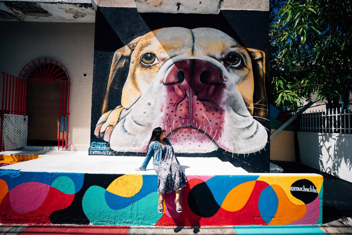 View of a colorful mural in Santurce es Ley art project.