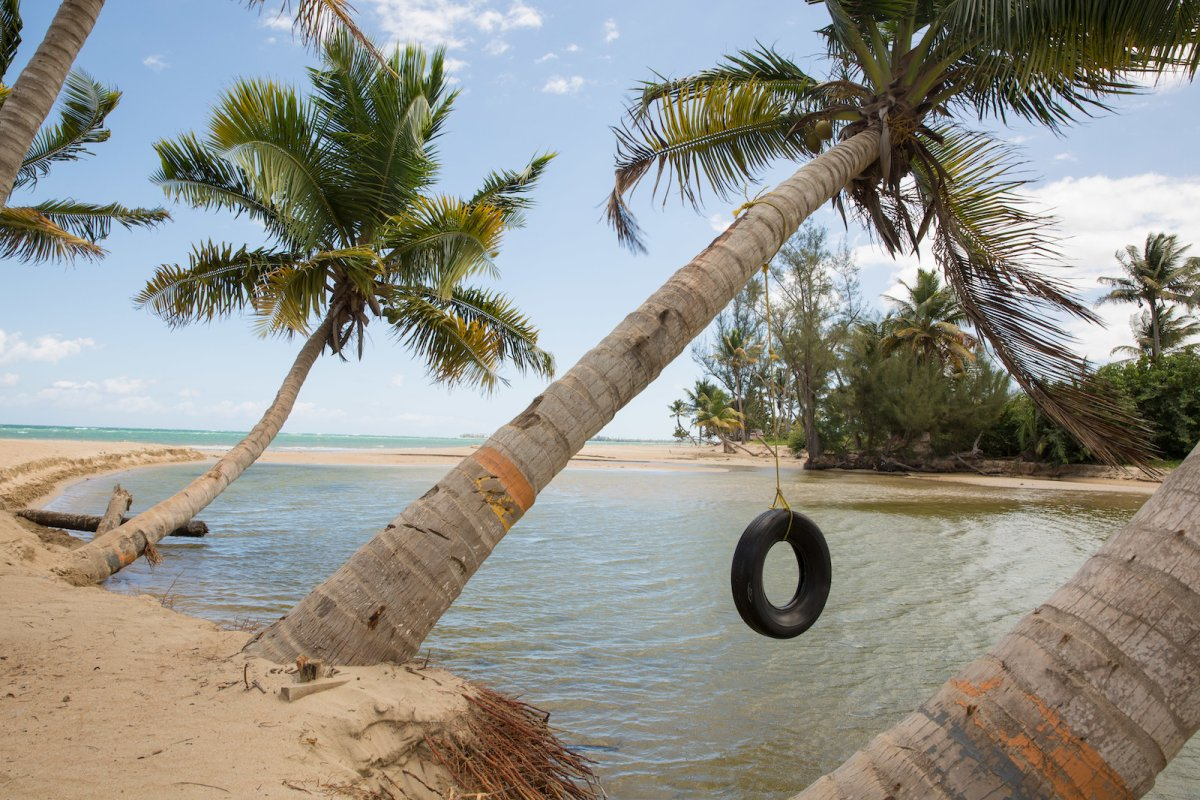 A rope swing hangs into the ocean in Loiza.