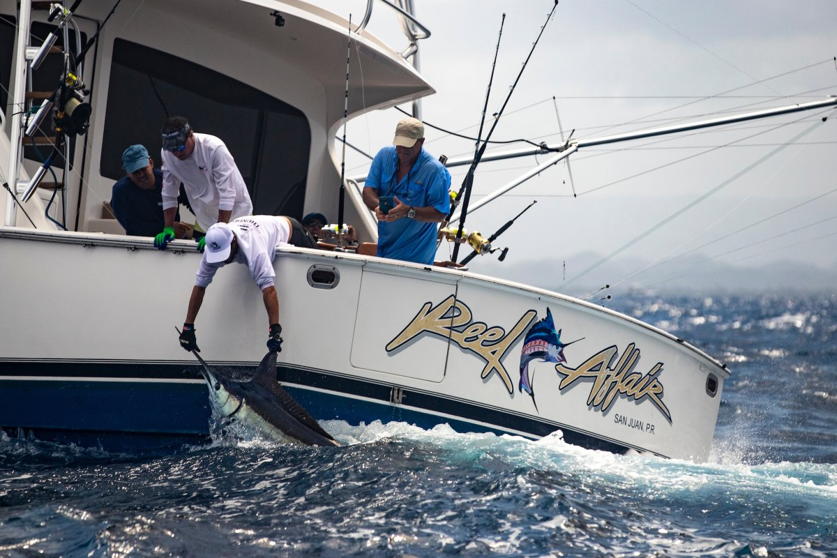 Puerto Rico hosts the International Billfish Tournament.