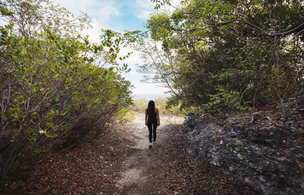 A woman walks one of the Guanica's Dry Forest trials.