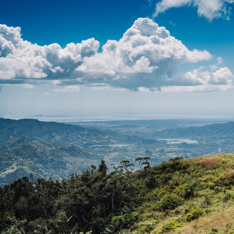 View of Puerto Rico's central mountain range along the ruta de la longaniza.