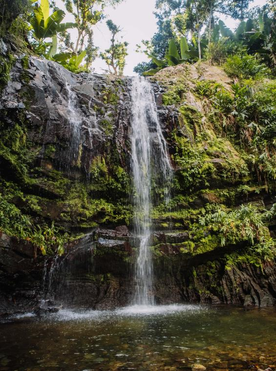 Las Delicias Falls, in the beautiful Tres Picachos State Forest.