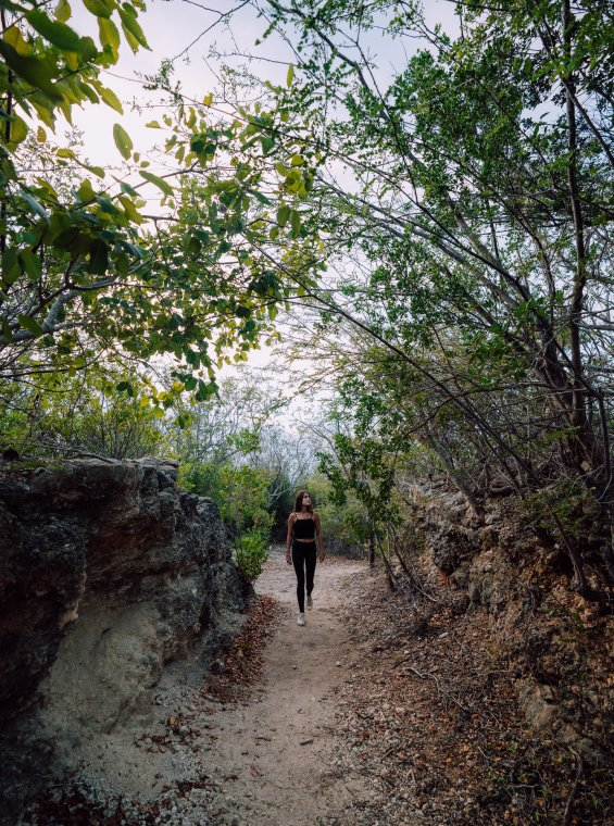 A woman walks through a hiking trail in Guánica's Dry Forest.